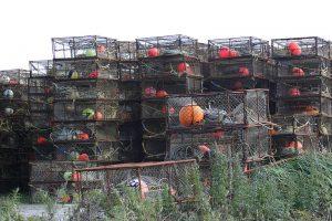 krab fuiken gebruikt voor krab vissen