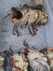 zachte krab op ijs